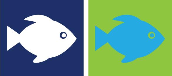 410-fish.jpg